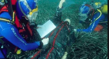 Mission de recherche et de secours sous-marins